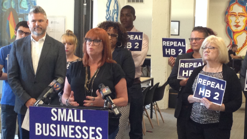 Lesa Kastanas; CLTCH; TurnOut! North Carolina; Repeal HB2; Small Businesses