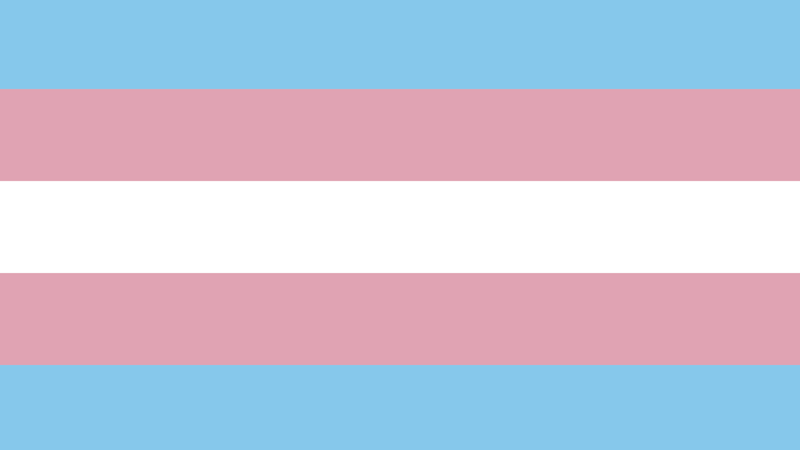 Before Transgender Day of Visibility, Highlighting Trans Survivors of Violence