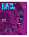 Corporate Equality Index Archive