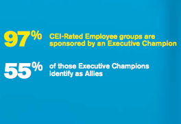 CEI Employee Resource Group Executive Champion