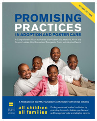 All Children - All Families: Promising Practices Guide