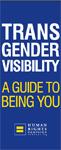 Transgender Visibility Guide