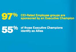 CEI Employee Resource Group Executive Champion