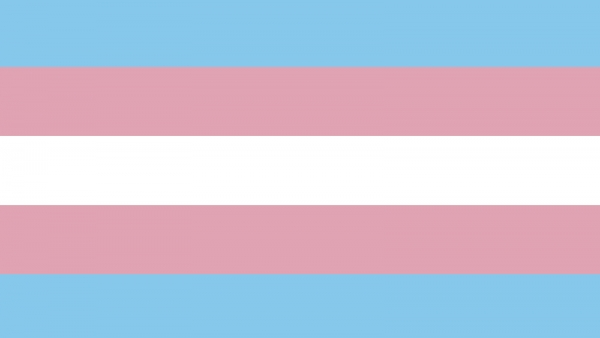 HRC Arkansas Joins ArTEC In Celebrating Trans Day of Resilience
